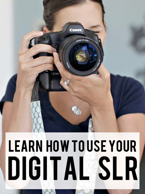 Learn how to use your digital SLR camera