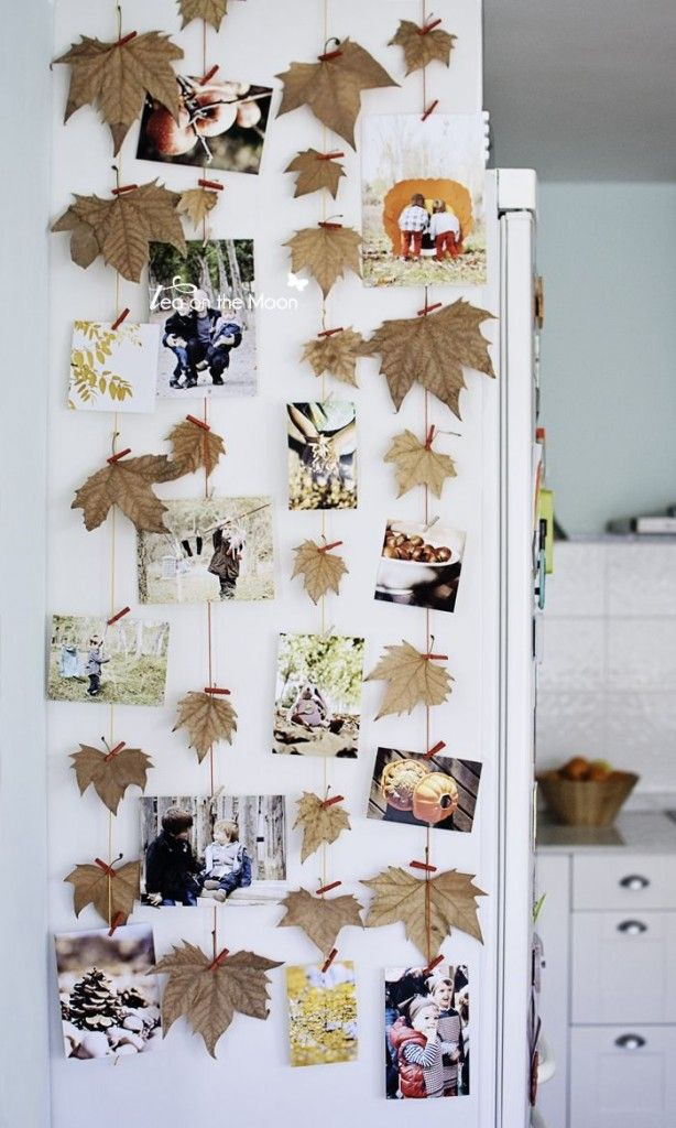 Accent wall full of leaves and fall photos